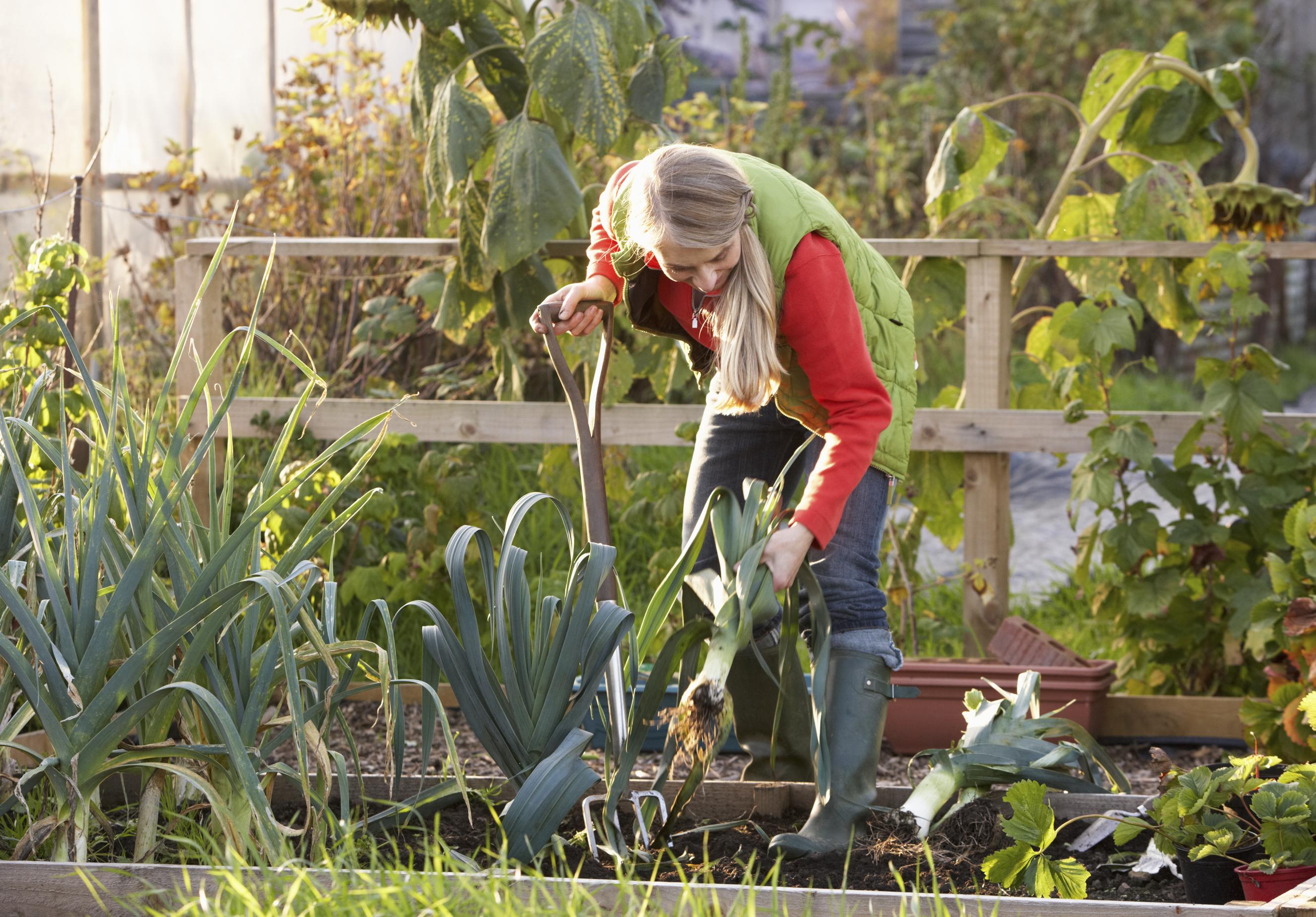 Garten Pachten Kaufen